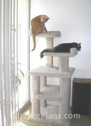 Cat Tree Plans Customer 019