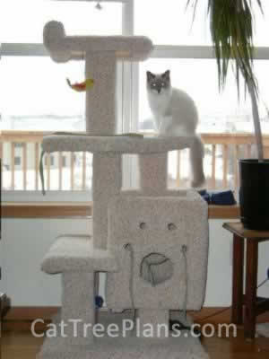Cat Tree Plans Customer 021