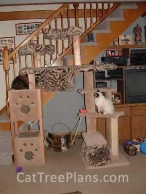 Cat Tree Plans Customer 023