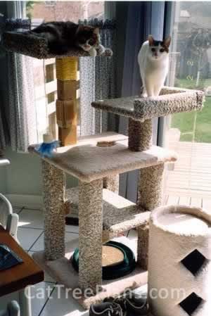Cat Tree Plans Customer 032