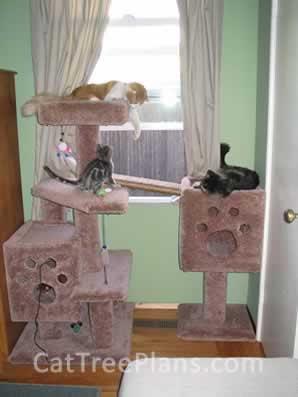 Cat Tree Plans Customer 033