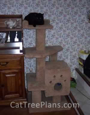 Cat Tree Plans Customer 034