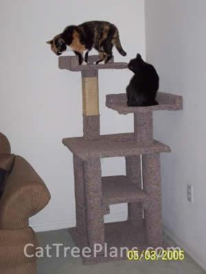 Cat Tree Plans Customer 035