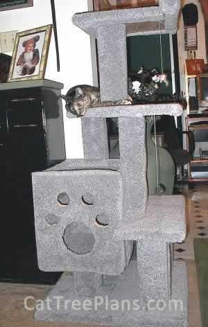 Cat Tree Plans Customer 036
