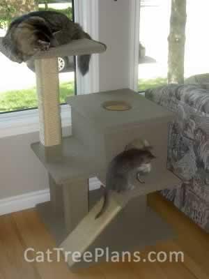 Cat Tree Plans Customer 040