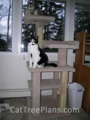 Cat Tree Plans Customer 044