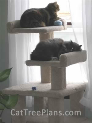 Cat Tree Plans Customer 056
