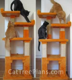 Cat Tree Plans Customer 058
