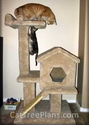 Cat Tree Plans Customer 059