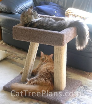 Cat Tree Plans Customer 062