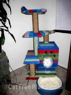 Cat Tree Plans Customer 066