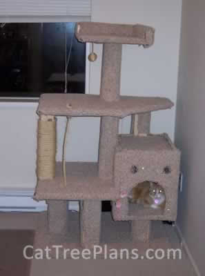 Cat Tree Plans Customer 067