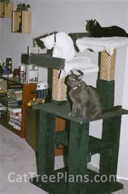 Cat Tree Plans Customer 069