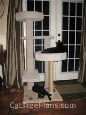 Cat Tree Plans Customer 071