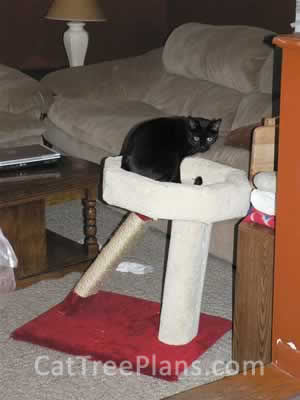 Cat Tree Plans Customer 073