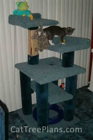 Cat Tree Plans Customer 076