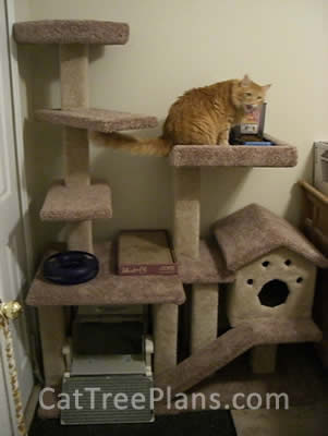 Cat Tree Plans Customer 077