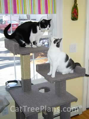 Cat Tree Plans Customer 090
