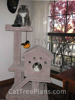 Cat Tree Plans Customer 092