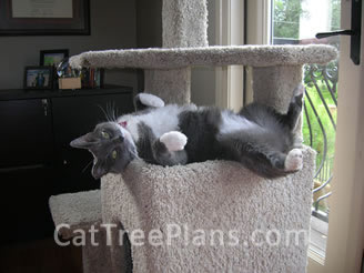 Cat Tree Plans Customer 097