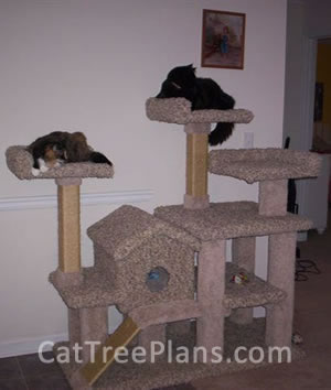 Cat Tree Plans Customer 102
