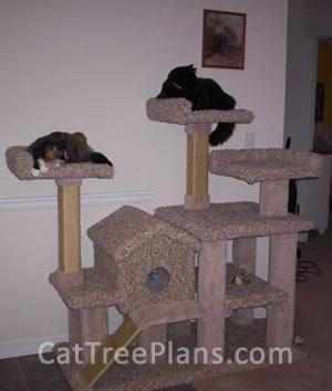 Cat Tree Plans Customer 102