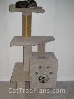 Cat Tree Plans Customer 103