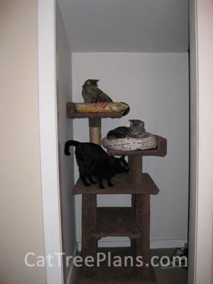 Cat Tree Plans Customer 105