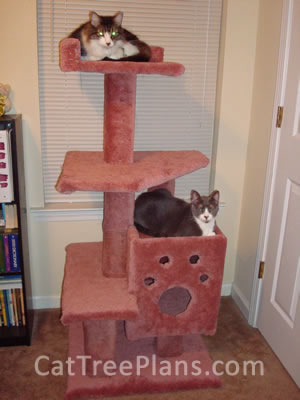 Cat Tree Plans Customer 106