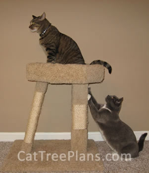 Cat Tree Plans Customer 109