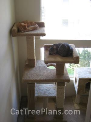 Cat Tree Plans Customer 111