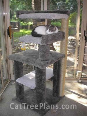 Cat Tree Plans Customer 112