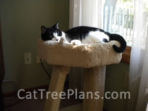 Cat Tree Plans Customer 117