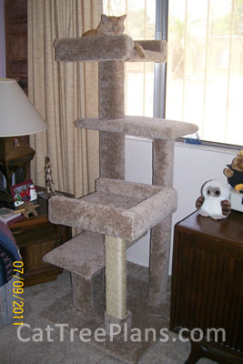 Cat Tree Plans Customer 118