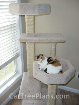 Cat Tree Plans Customer 132