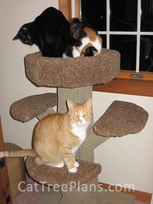 Cat Tree Plans Customer 137