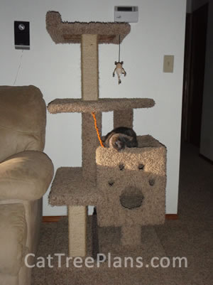 Customers cat trees cat tree plans for Design your own cat tree