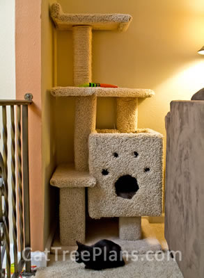 Customers cat trees cat tree plans for Diy cat tree house
