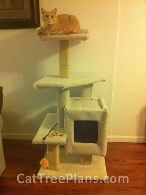 Cat Tree Plans Customer 145